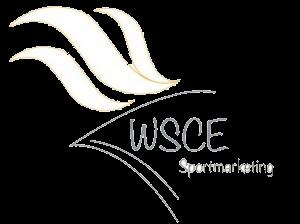 wsce-300x224